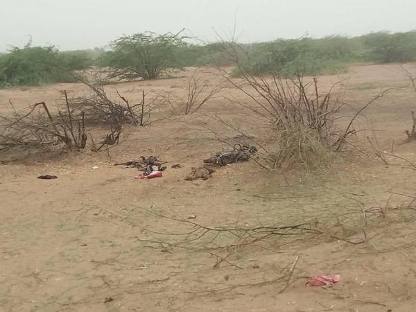 قتلى مليشيا الحوثي في الحديدة (صور + 18)
